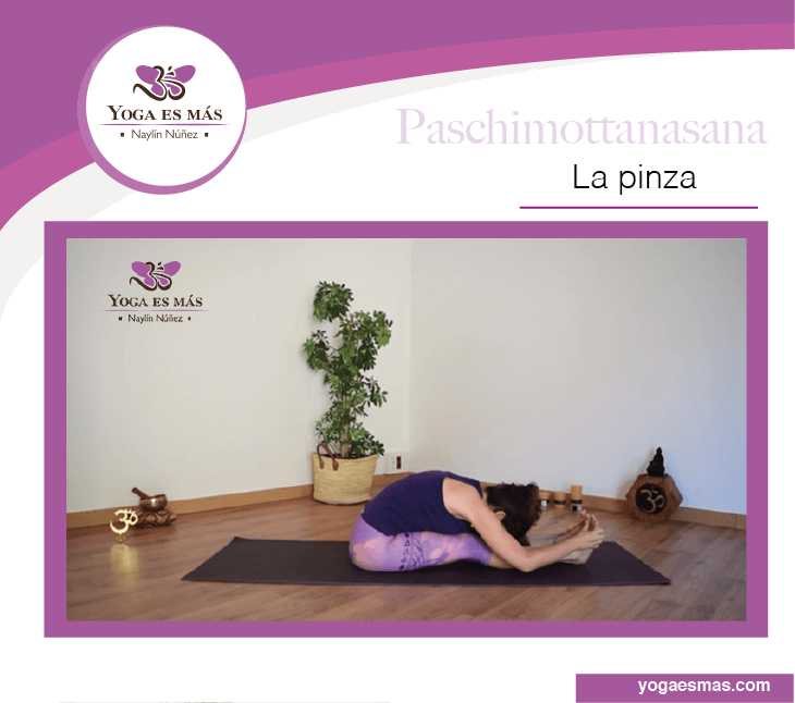 Paschimottanasana Clamp
